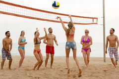 Amis jouant au volleyball Photo stock