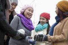 Amis jouant avec des boules de neige Image stock