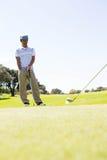Amis jouants au golf piquant  Image libre de droits