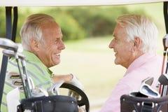 Amis mâles appréciant un jeu du golf Photo stock