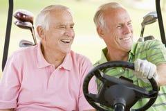 Amis mâles appréciant un jeu du golf Photographie stock