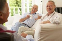 Amis mâles ayant une vie sociale à la maison Photos libres de droits