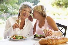 Amis mangeant un repas de fresque d'Al Images stock