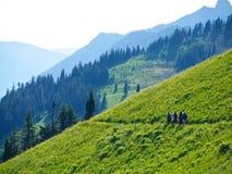 Amis marchant dans les prés alpins en fleur Photographie stock libre de droits
