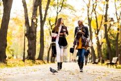Amis marchant en parc d'automne Photos libres de droits
