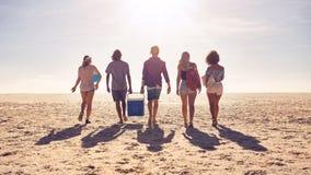 Amis marchant sur la plage portant une boîte plus fraîche Images libres de droits