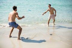 Amis masculins jouant le frisbee sur le rivage à la plage Photographie stock