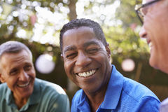 Amis masculins mûrs ayant une vie sociale dans l'arrière-cour ensemble Photo libre de droits