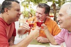 Amis masculins supérieurs appréciant des cocktails dans la barre ensemble Images libres de droits