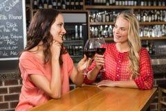 Amis mignons ayant un verre de vin rouge Image stock