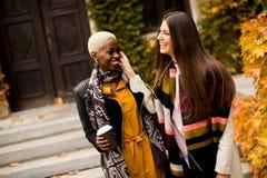Amis multiraciaux Photographie stock libre de droits