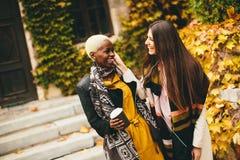 Amis multiraciaux Photos libres de droits
