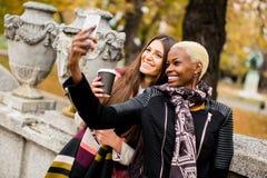 Amis multiraciaux prenant le selfie extérieur Image stock