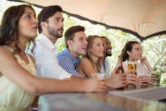 Amis observant le match de football au compteur Image libre de droits