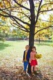 Amis par l'arbre Images stock