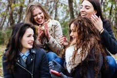Amis parlant et ayant l'amusement Photographie stock
