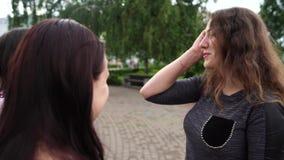 Amis parlant la position en parc Entretien de femmes banque de vidéos