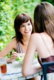 Amis partageant le déjeuner Photo libre de droits