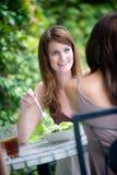 Amis partageant le déjeuner Photographie stock libre de droits