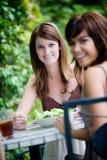 Amis partageant le déjeuner Image stock