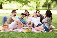 Amis photographiant au pique-nique en parc d'été Images libres de droits
