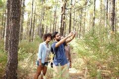Amis prenant des photos des pins Images stock