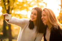 Amis prenant le selfie en nature Photos stock
