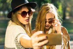 Amis prenant le selfie en parc Image stock