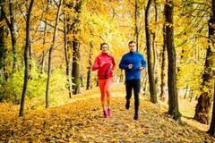 Amis pulsant en nature d'automne Image libre de droits