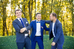 Amis riant du mariage d'un ami Image stock