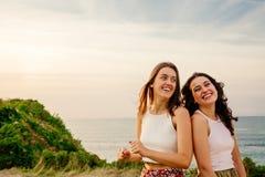 Amis riants sur une falaise Photographie stock