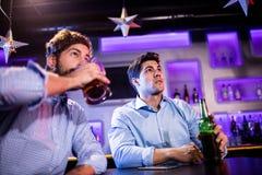 Amis s'asseyant au compteur de barre et ayant la bière Images libres de droits