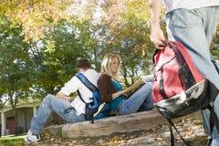 Amis s'asseyant de nouveau au dos au parc Image stock