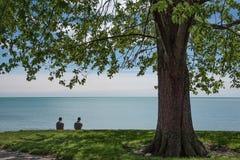 Amis s'asseyant sous un arbre sur le rivage Images stock