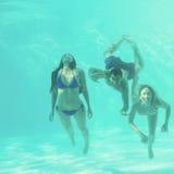 Amis sous-marins dans la piscine Photos stock