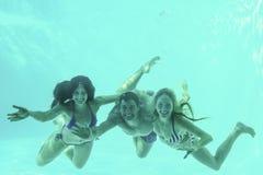 Amis sous-marins dans la piscine Photo stock