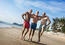 Amis supérieurs appréciant la plage pendant l'été Photo stock