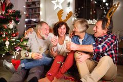Amis supérieurs avec des bandeaux d'andouillers de cerfs communs au temps de Noël Photographie stock