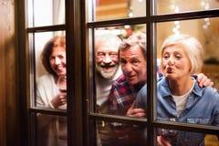 Amis supérieurs avec des verres de vin au temps de Noël Photos libres de droits