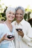 Amis supérieurs avec des verres de vin dehors Photo libre de droits