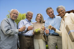 Amis supérieurs ayant Champagne Photo libre de droits