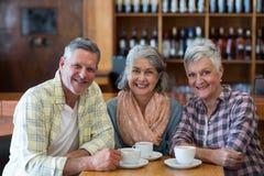 Amis supérieurs de sourire ayant la tasse de thé dans le restaurant Images stock
