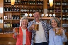 Amis supérieurs de sourire tenant le verre de bière dans la barre Photos stock