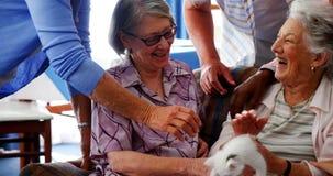 Amis supérieurs et docteur féminin frottant le chaton à la maison de retraite 4k banque de vidéos