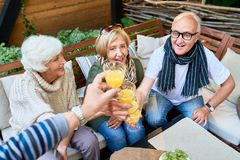 Amis supérieurs grillant au déjeuner Image libre de droits
