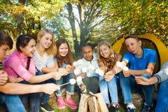 Amis sur la guimauve de gril de terrain de camping ensemble Photo stock