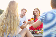 Amis sur le pique-nique de plage d'été Image stock