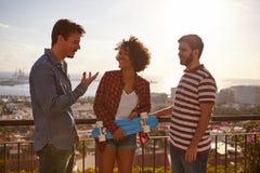 Amis sur un pont dans la discussion Images stock