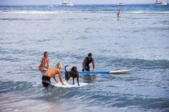 Amis surfant avec un crabot en Hawaï Images stock