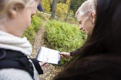 Amis tenant la carte tout en augmentant dans la forêt Images stock